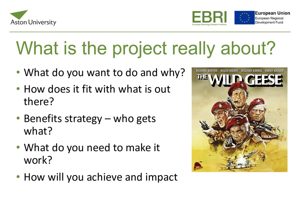 What is the project really about? • What do you...