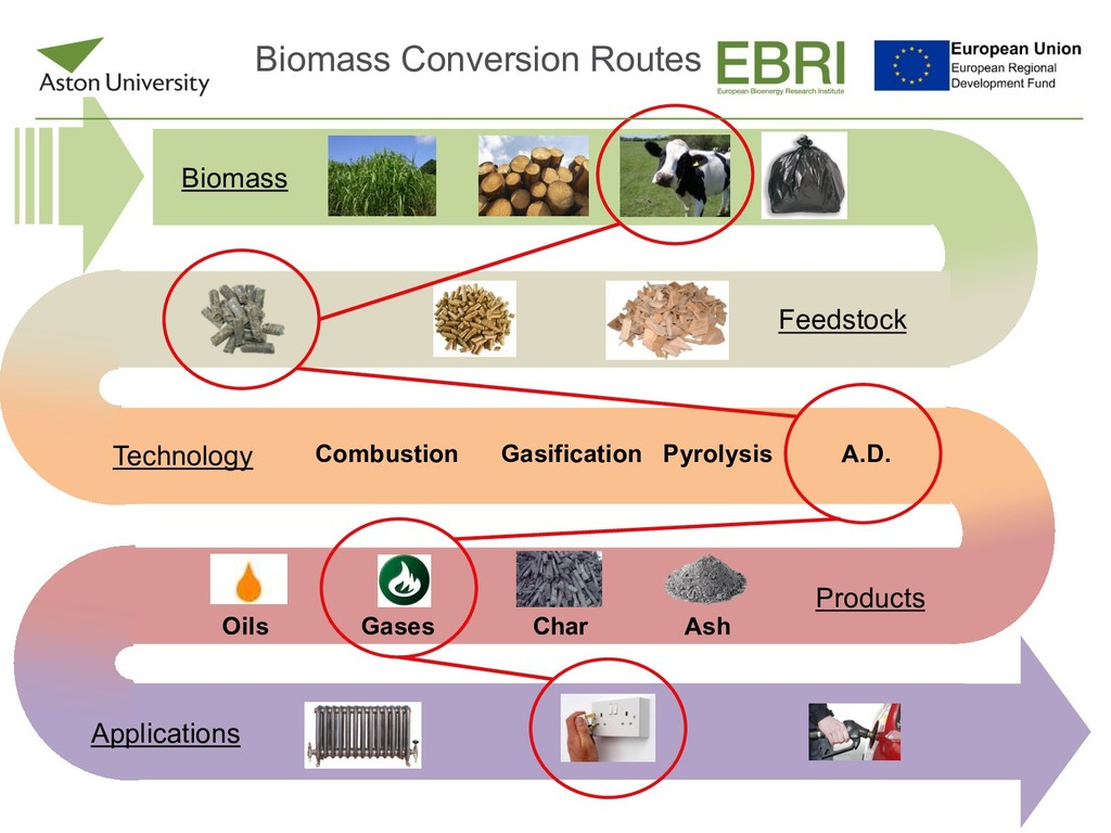 Biomass Feedstock Technology Combustion Gasific...