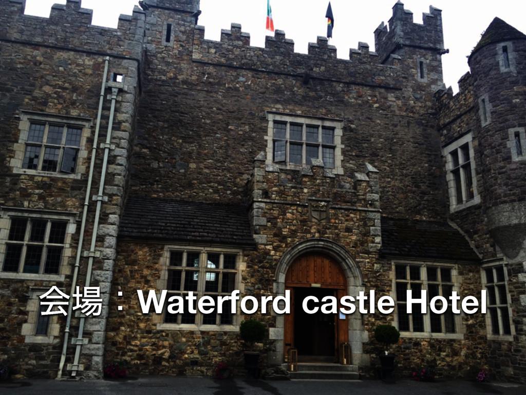 ձɿWaterford castle Hotel