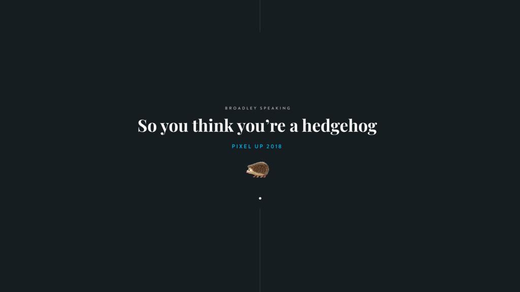 So you think you're a hedgehog B R O A D L E Y ...