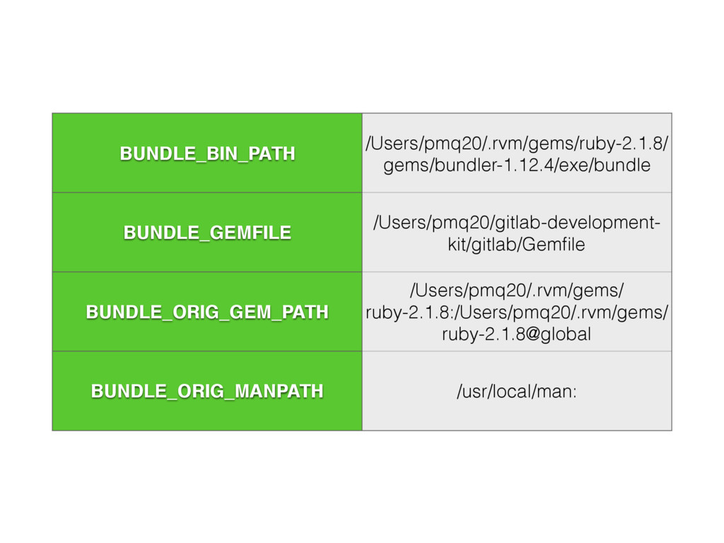 BUNDLE_BIN_PATH /Users/pmq20/.rvm/gems/ruby-2.1...