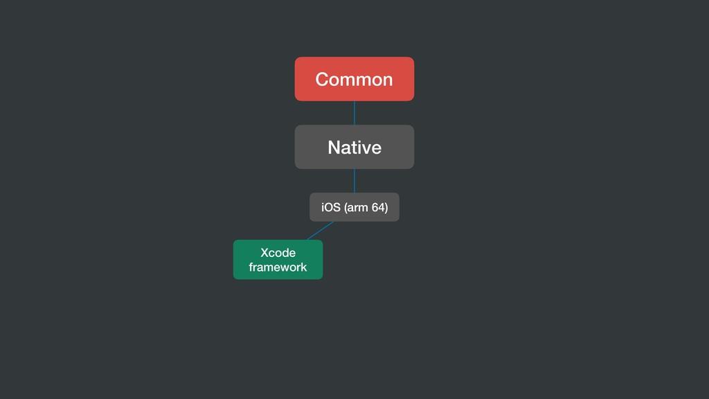 Common Native iOS (arm 64) Xcode framework
