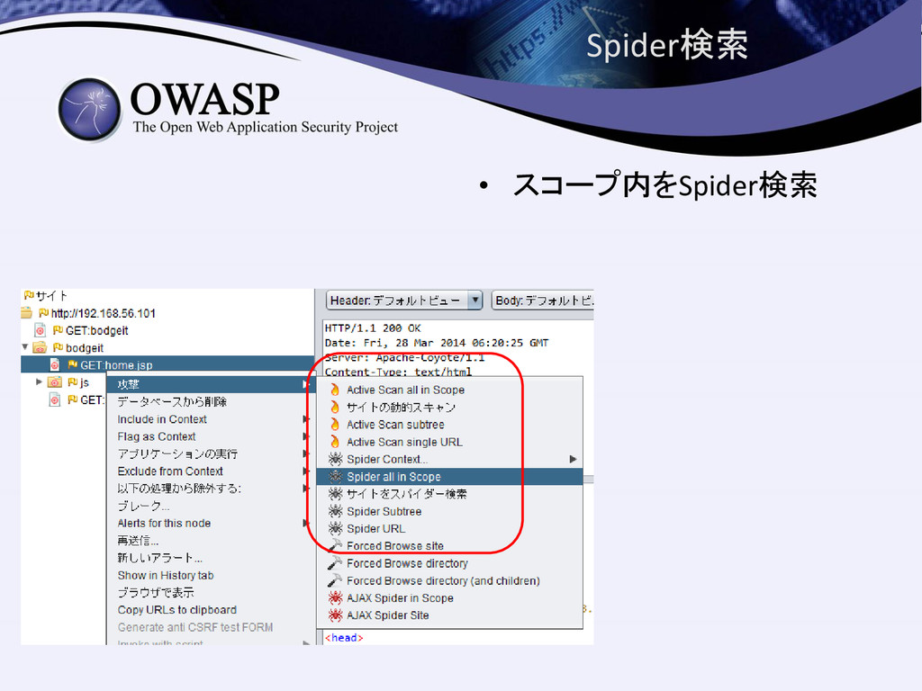 Spider検索 • スコープ内をSpider検索