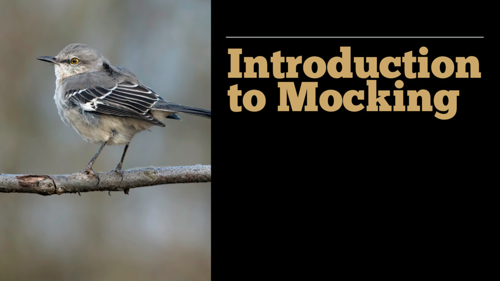 Introduction to Mocking