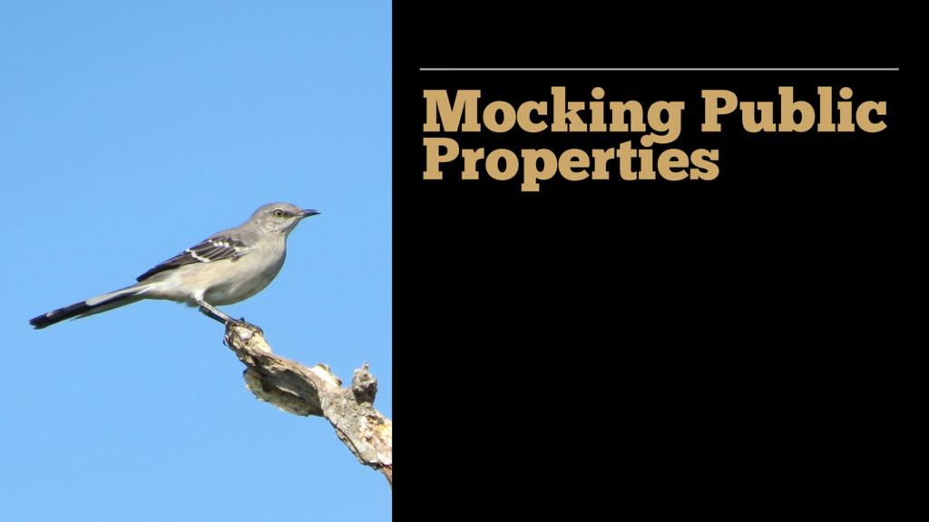 Mocking Public Properties