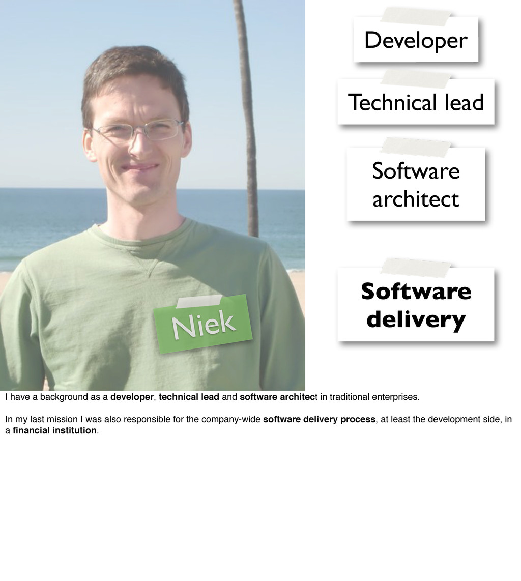 Niek Developer Technical lead Software architec...
