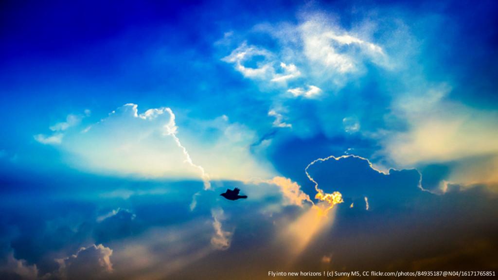 @PreusslerBerlin Fly into new horizons ! (c) Su...