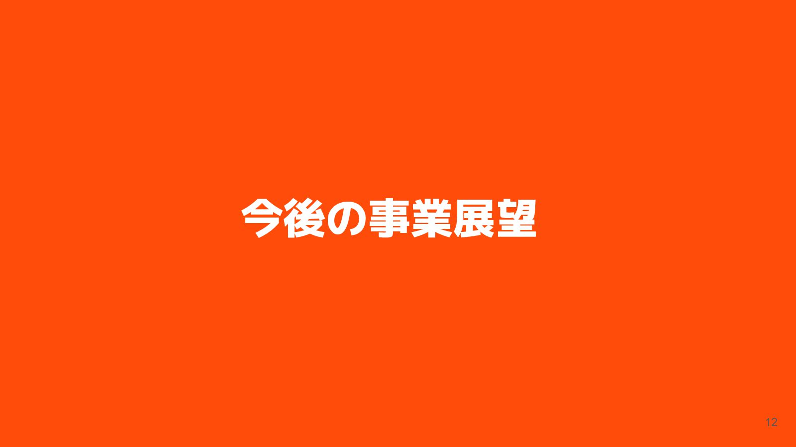 チームの紹介 12