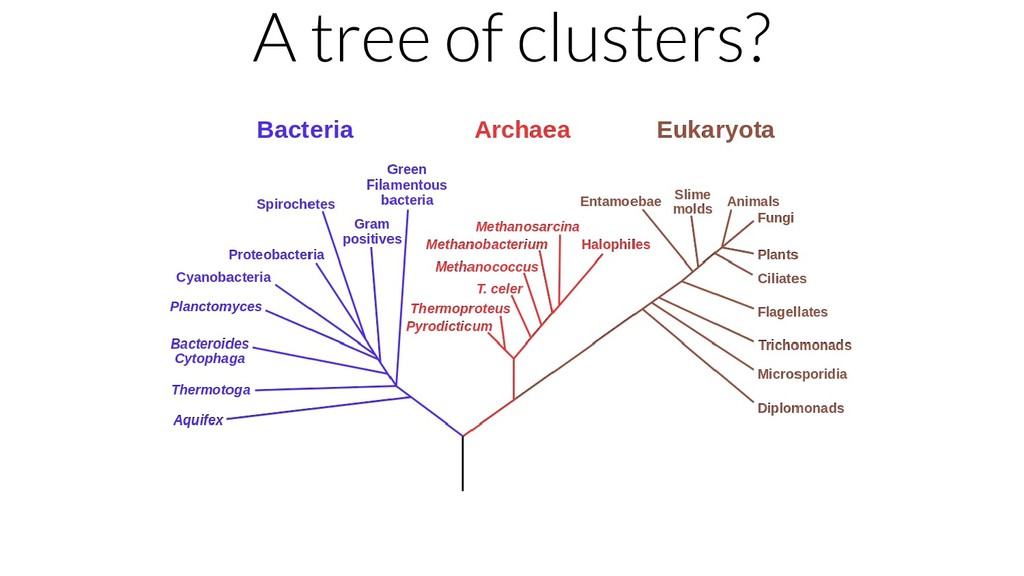 A tree of clusters?