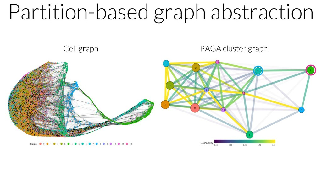 Partition-based graph abstraction Cell graph PA...