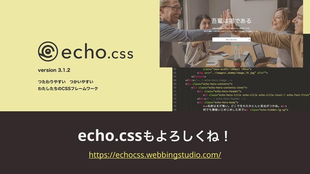 echo.cssΑΖ͘͠Ͷʂ https://echocss.webbingstudio.c...