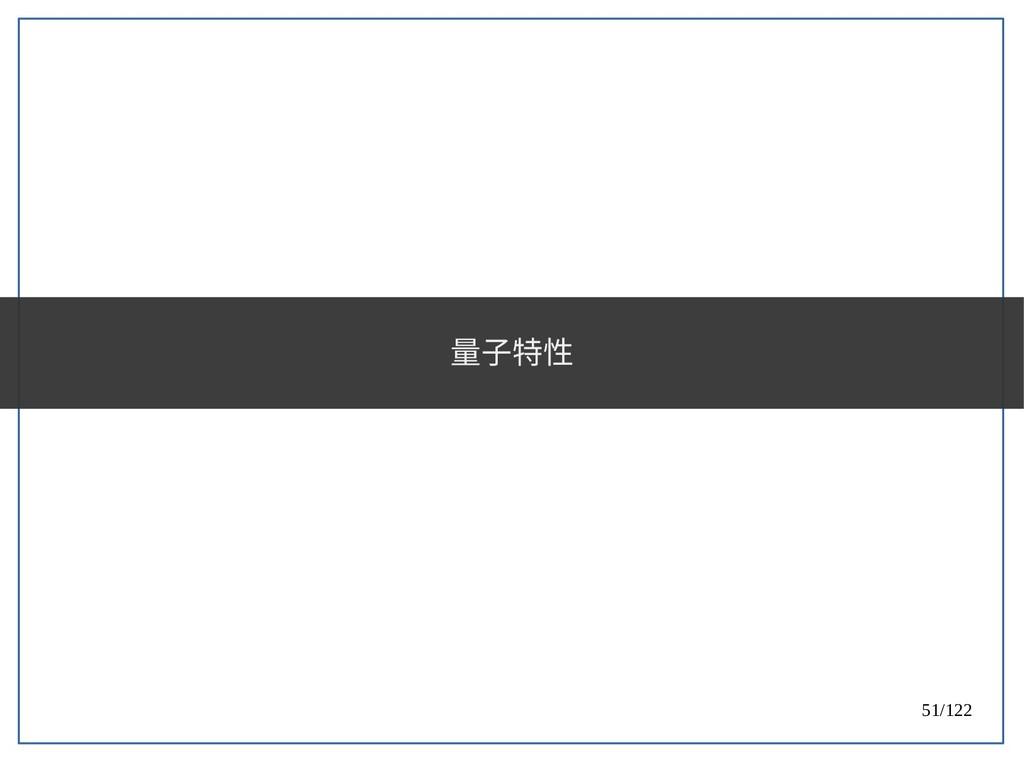 51/122 量子特性