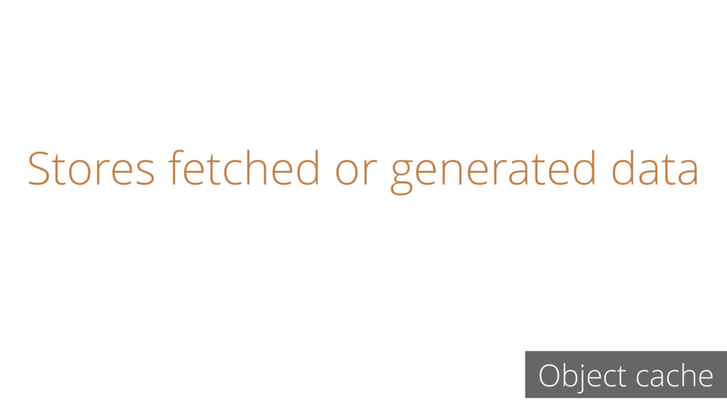 Stores fetched or generated data Object cache