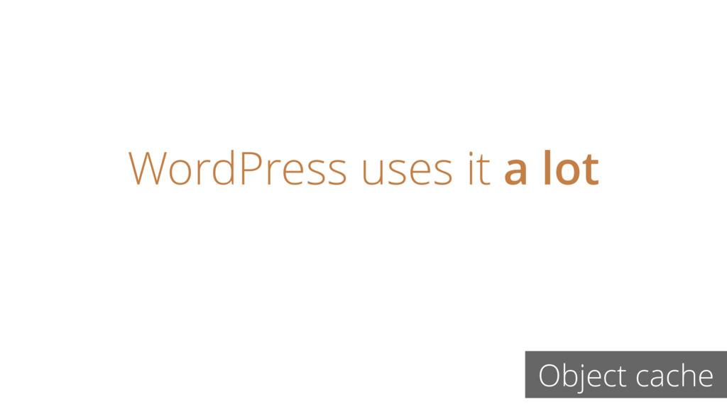 WordPress uses it a lot Object cache