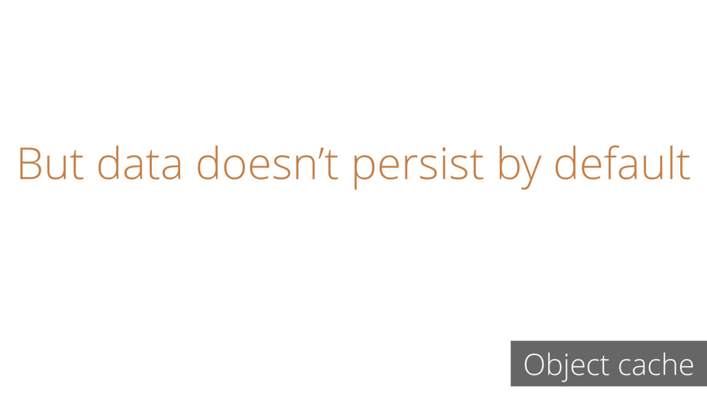But data doesn't persist by default Object cache