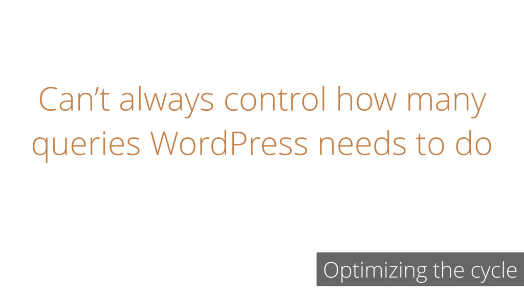 Can't always control how many queries WordPress...