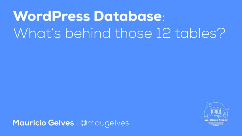 WordPress Database: What's behind those 12 tabl...