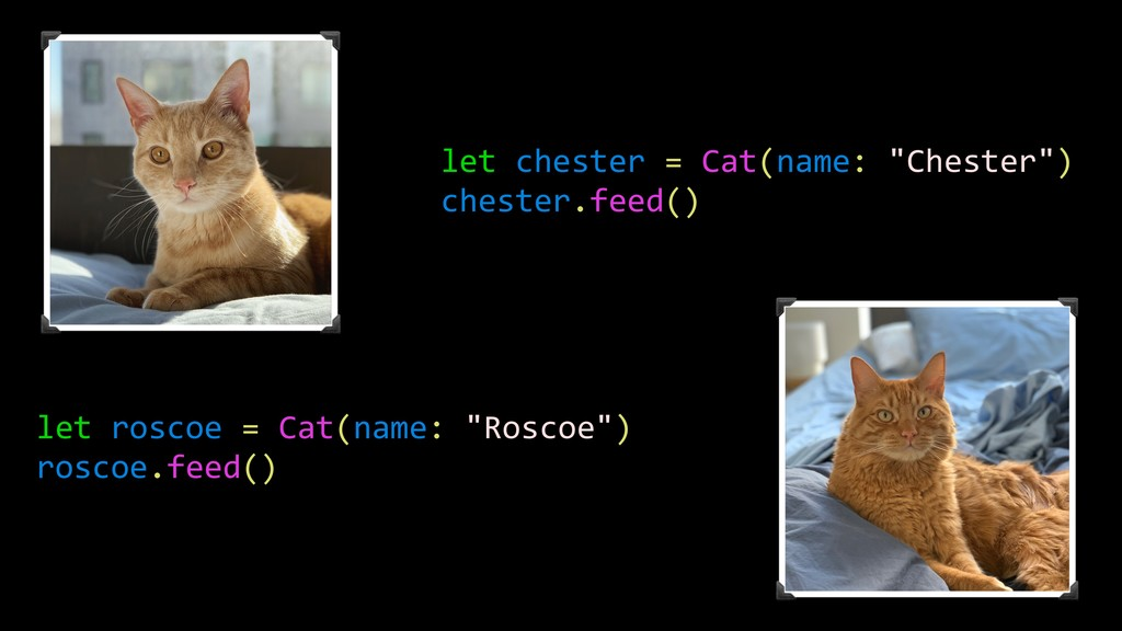 """let chester = Cat(name: """"Chester"""") chester.feed..."""