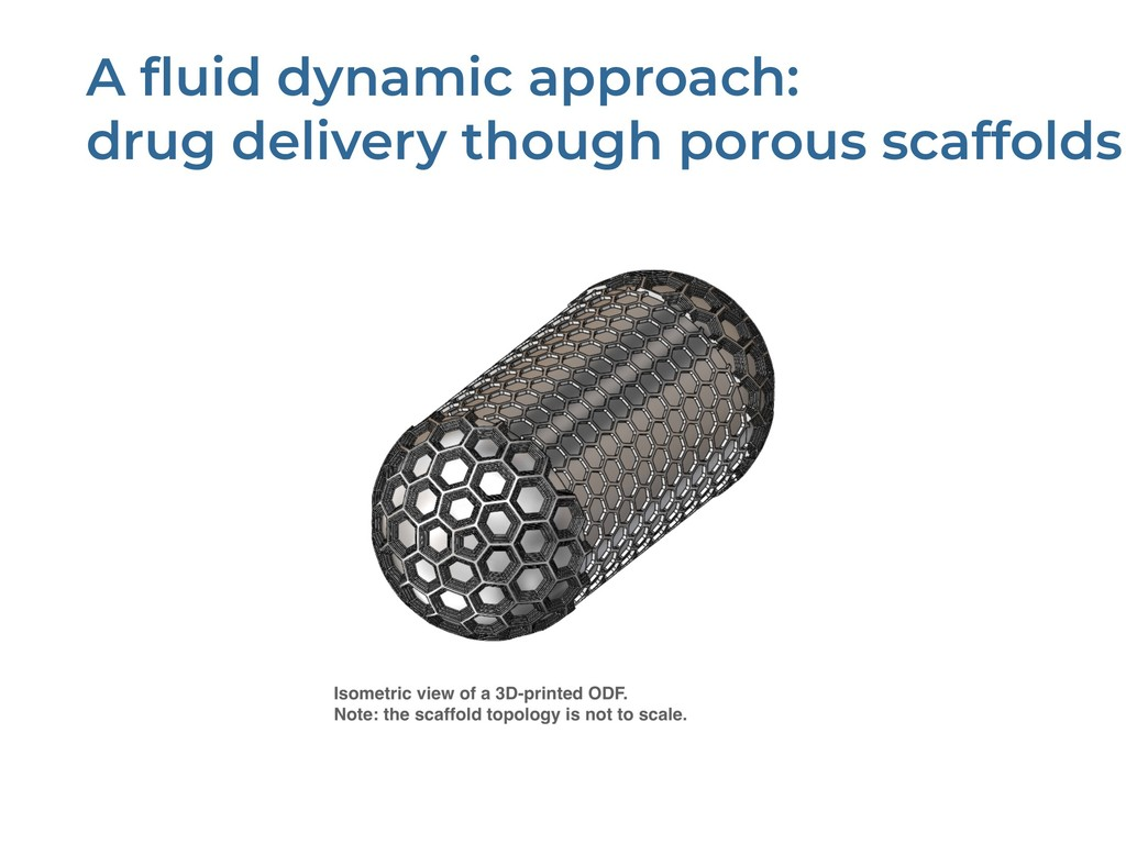 A fluid dynamic approach: