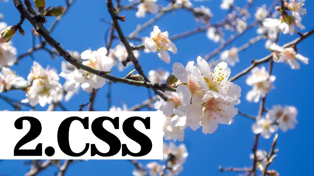 2.CSS