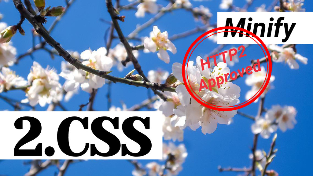 Minify 2.CSS HTTP2 Approved