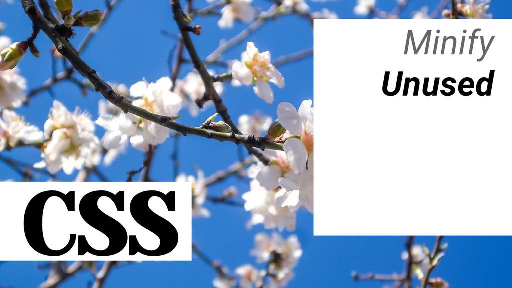 CSS Minify Unused