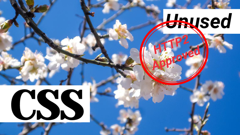 CSS Unused HTTP2 Approved