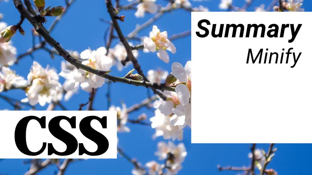 CSS Summary Minify