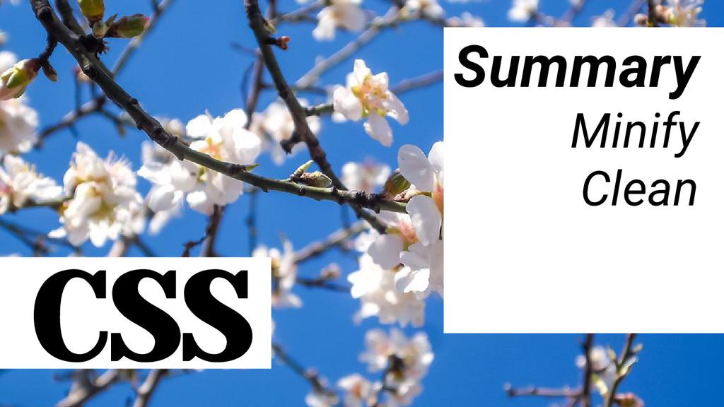 CSS Summary Minify Clean