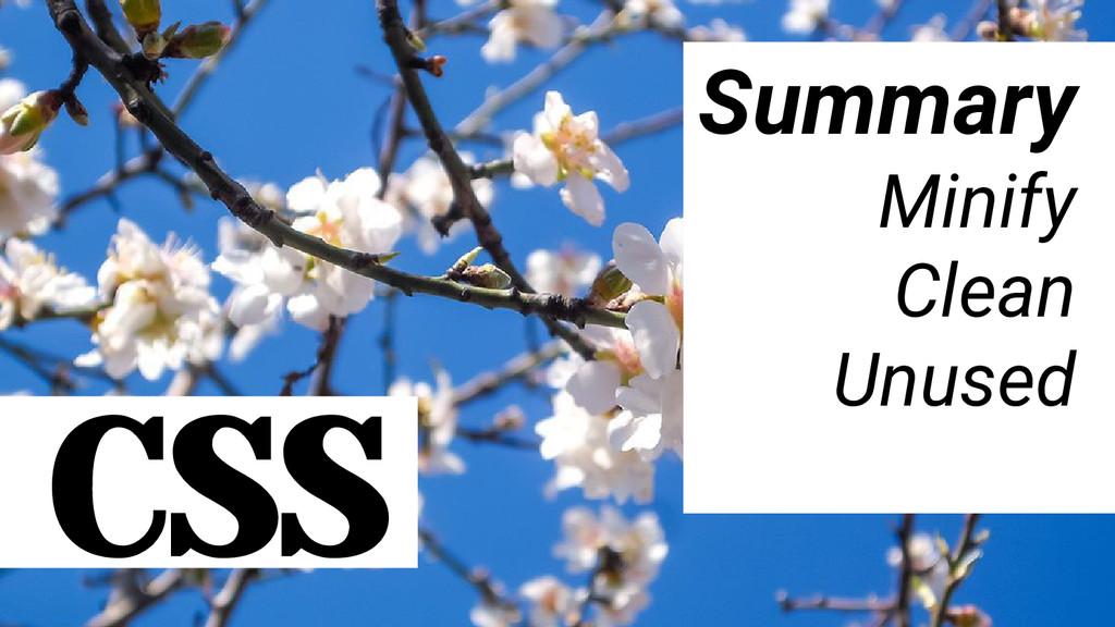 CSS Summary Minify Clean Unused