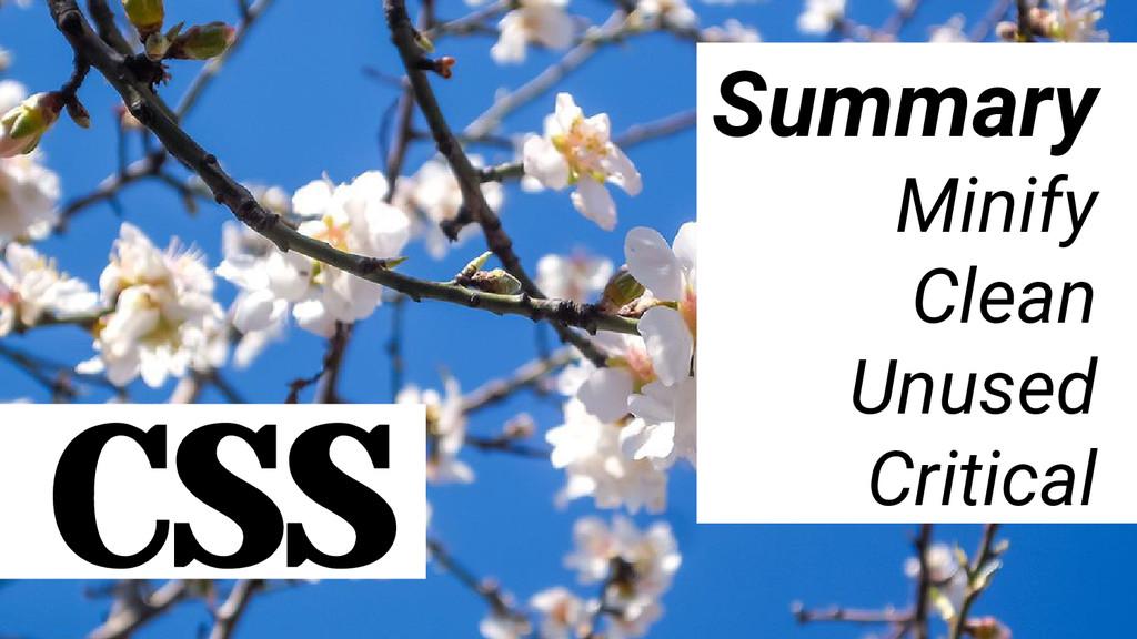 CSS Summary Minify Clean Unused Critical