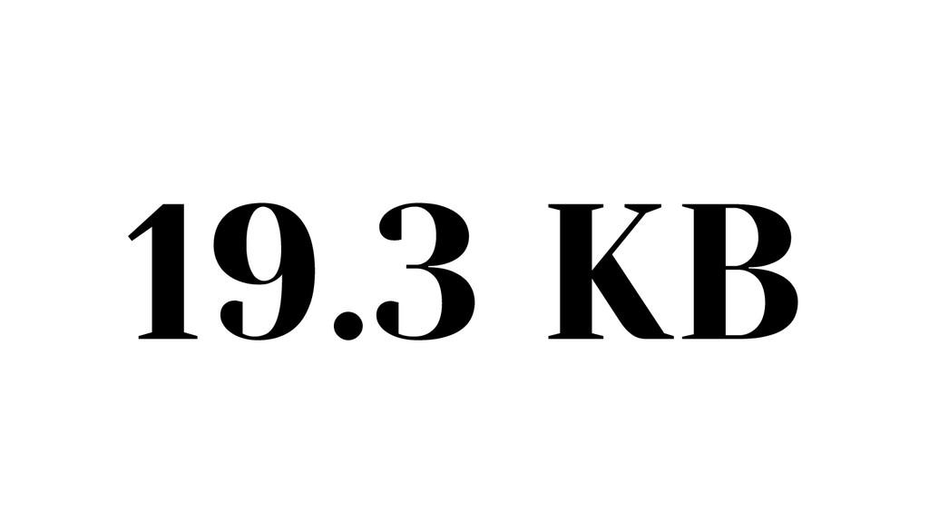 19.3 KB