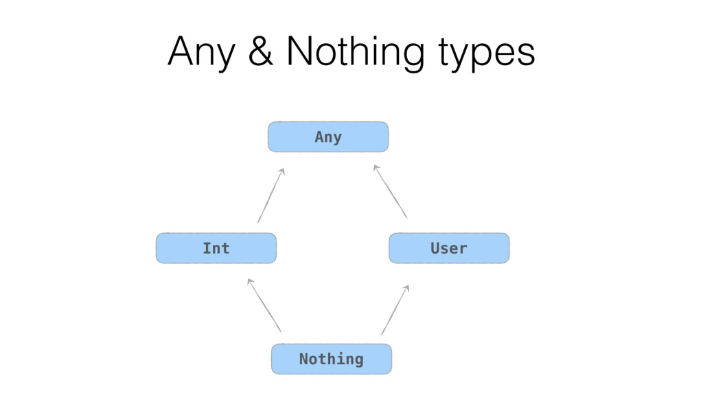 Any & Nothing types Int Any User Nothing