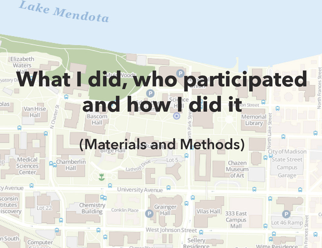 What I did, who participated and how I did it (...