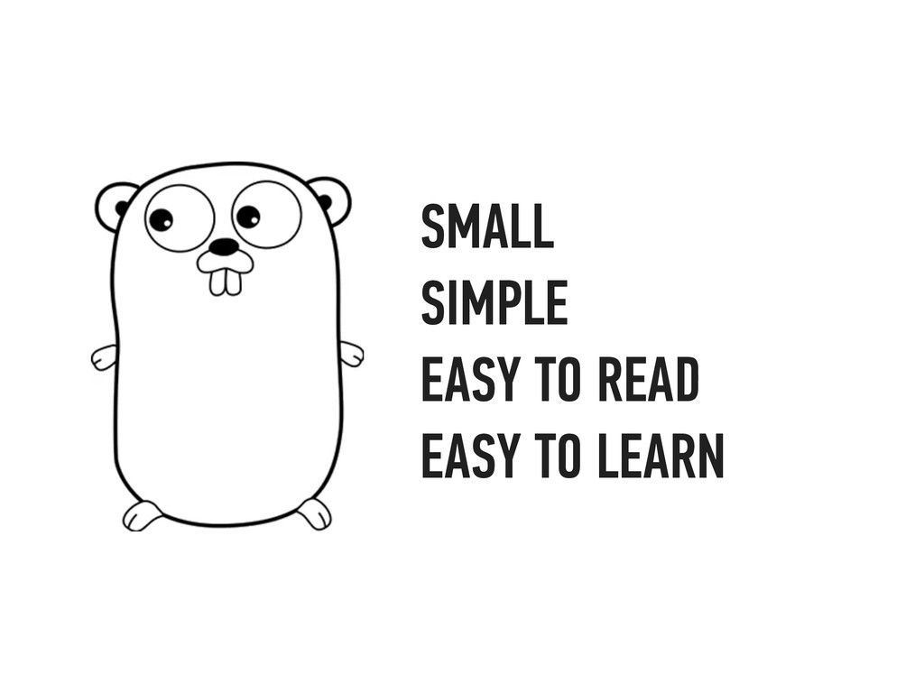 SMALL SIMPLE EASY TO READ EASY TO LEARN