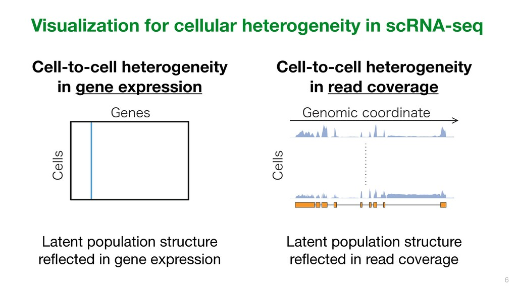 Cell-to-cell heterogeneity in gene expression...