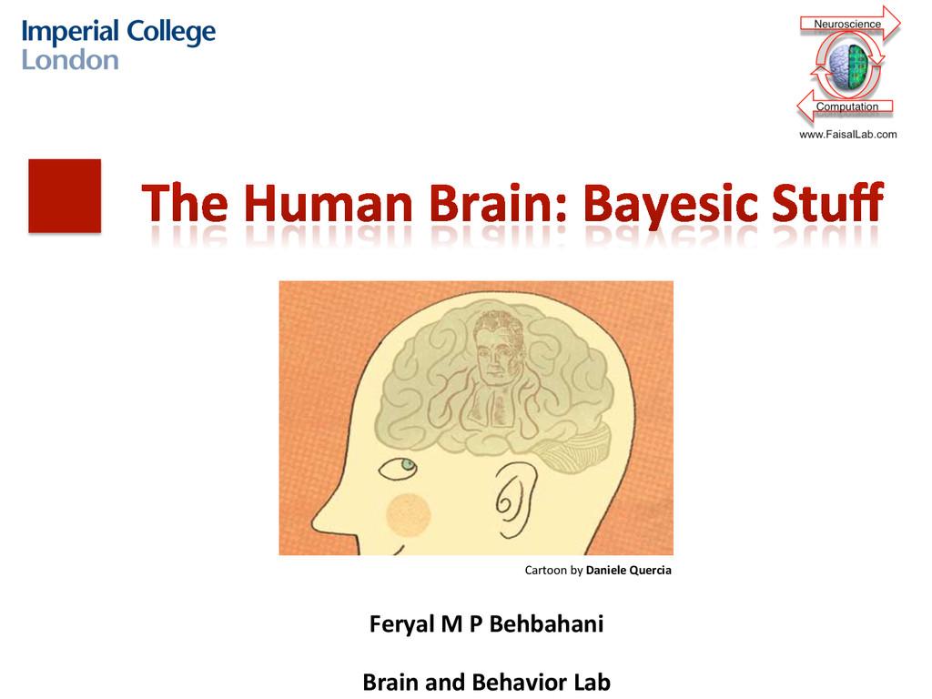 Feryal M P Behbahani    Brain ...