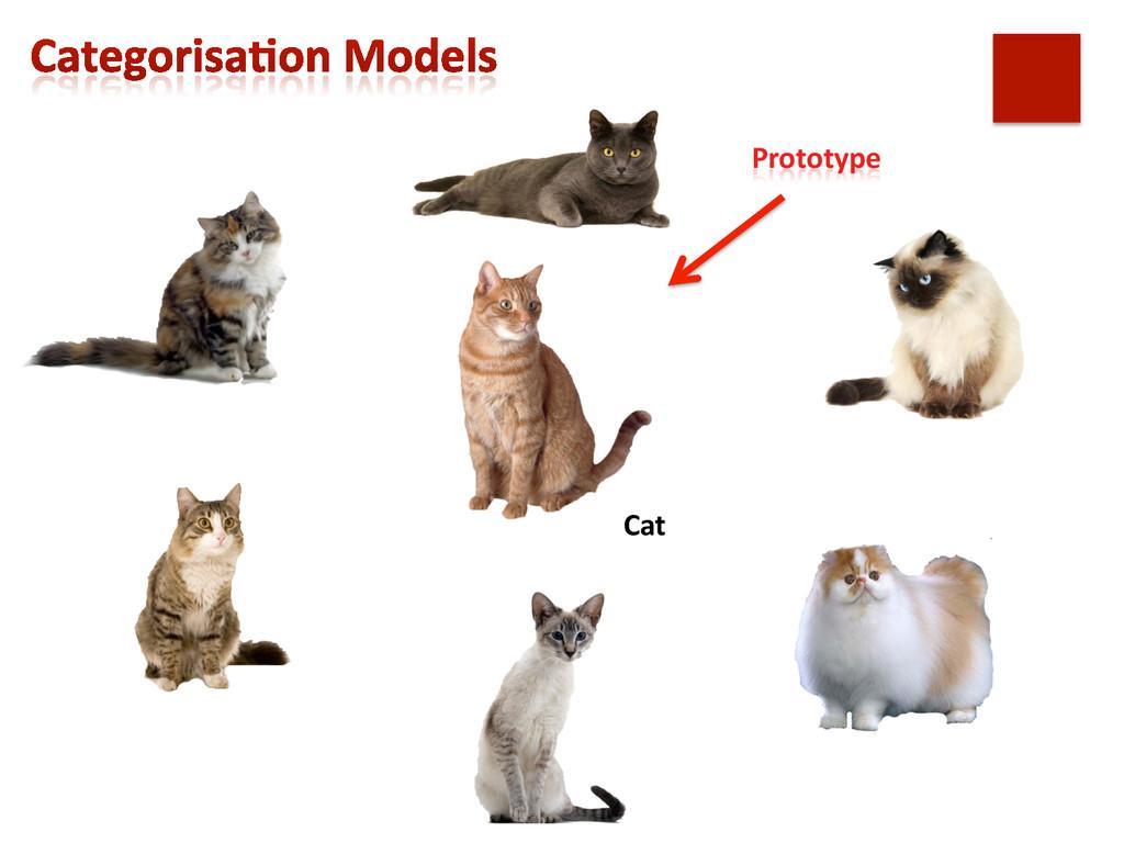 Prototype  Cat