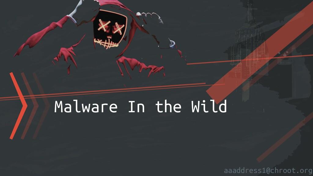 aaaddress1@chroot.org 〉〉〉Malware In the Wild