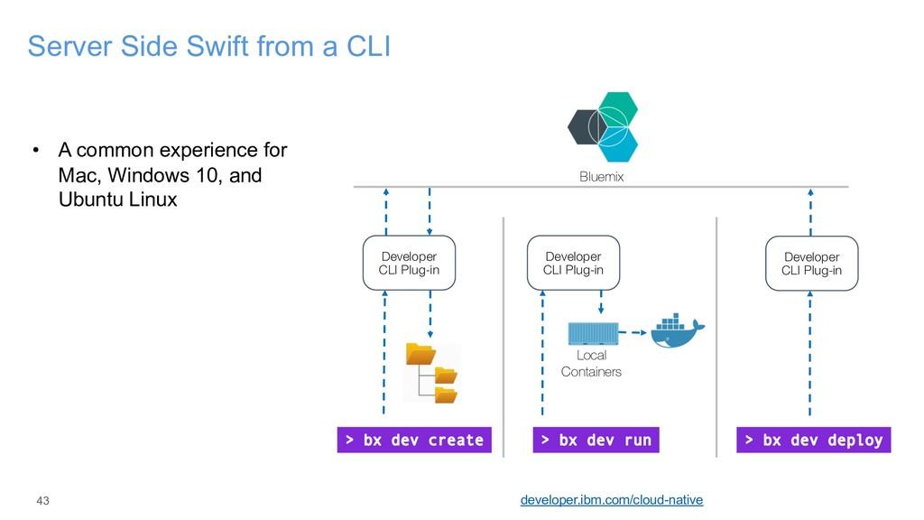 43 Server Side Swift from a CLI developer.ibm.c...