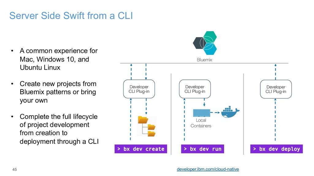 45 Server Side Swift from a CLI developer.ibm.c...