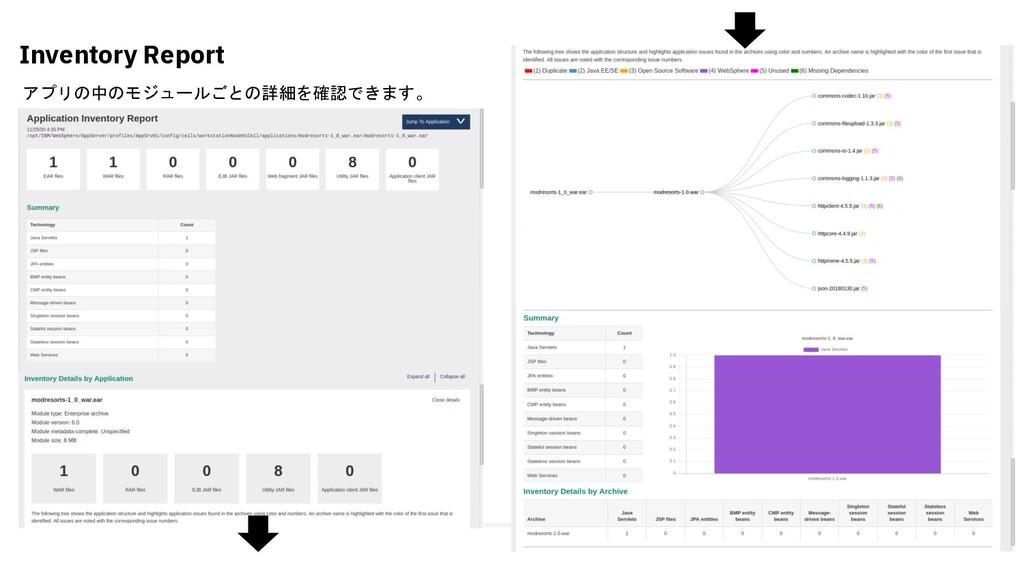 Inventory Report アプリの中のモジュールごとの詳細を確認できます。
