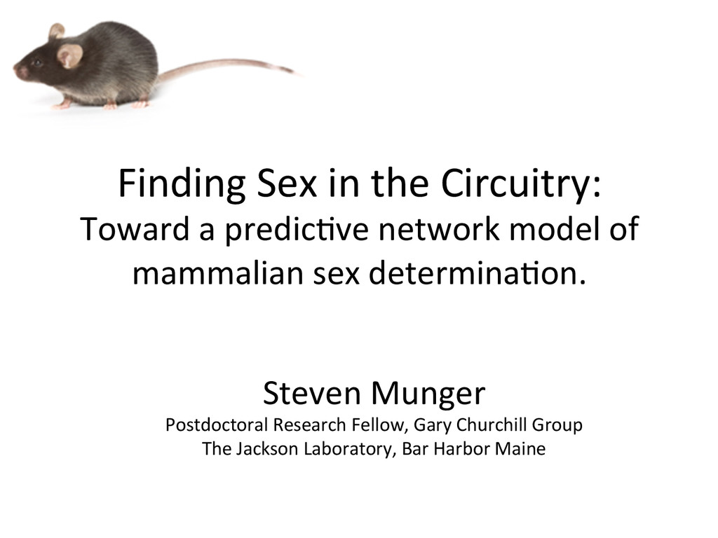 Finding Sex in the Circuitry:  T...