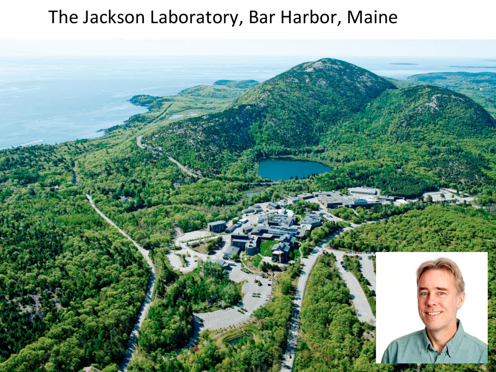 The Jackson Laboratory, Bar Harbor,...