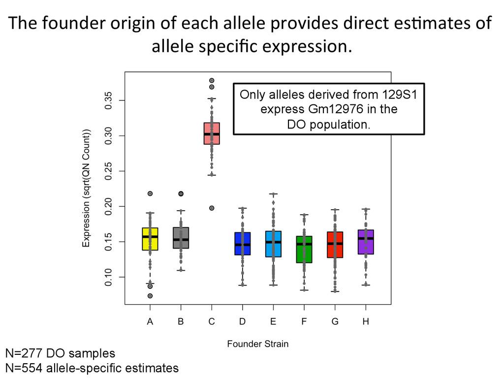 The founder origin of each allel...