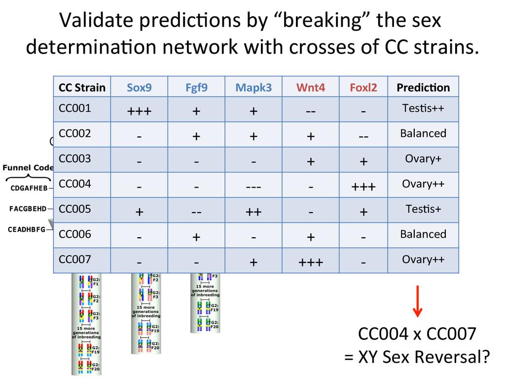 Collaborative Cross Strains Validate predic7...