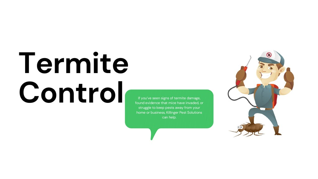 Termite Control If you've seen signs of termite...