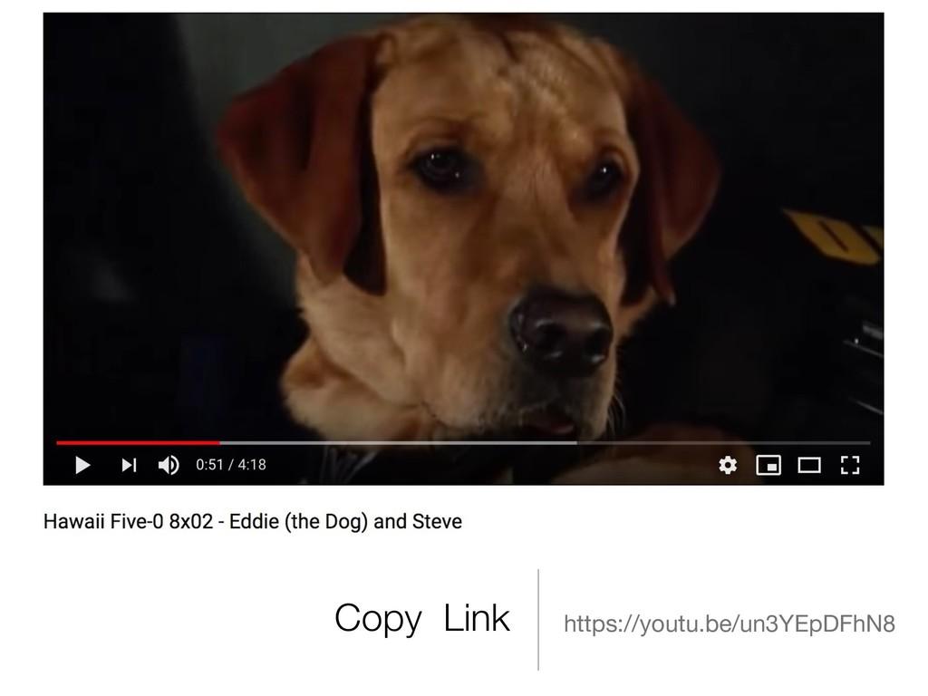 Copy Link https://youtu.be/un3YEpDFhN8