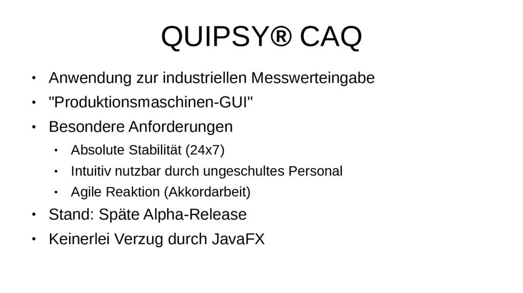 QUIPSY® CAQ ● Anwendung zur industriellen Messw...
