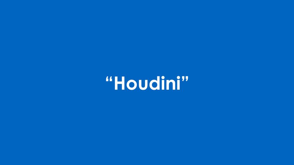 """""""Houdini"""""""